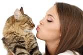8 Terrific Gifts for the Crazy Cat Person in Your Life