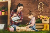 The 15 Absolute Best Ways to Save on Your Home and Garden