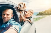 Find Cheaper Car Insurance in Just Minutes