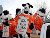 Get a Free Entree at Chick-fil-A Today