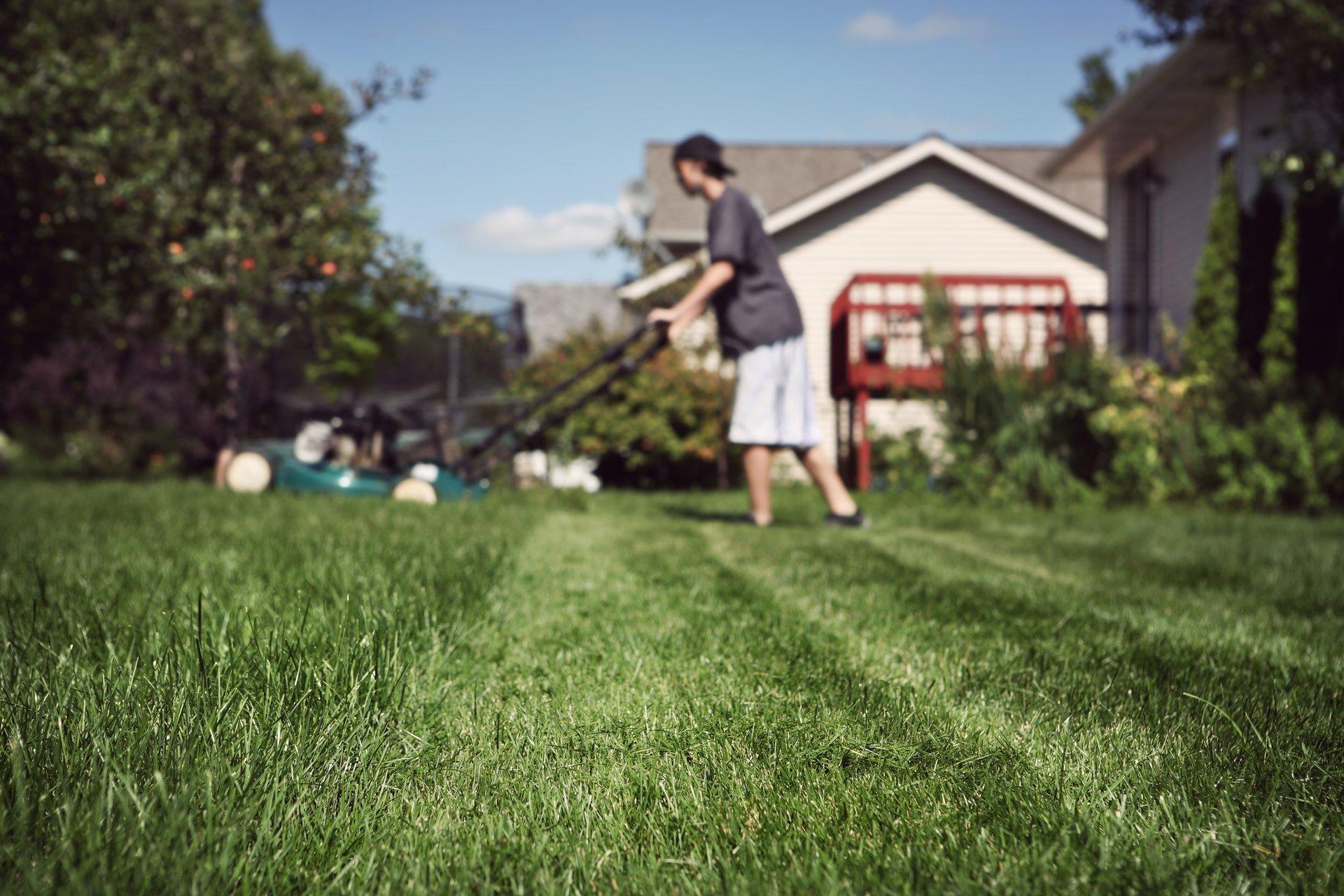 Teenage boy mowing lawn.