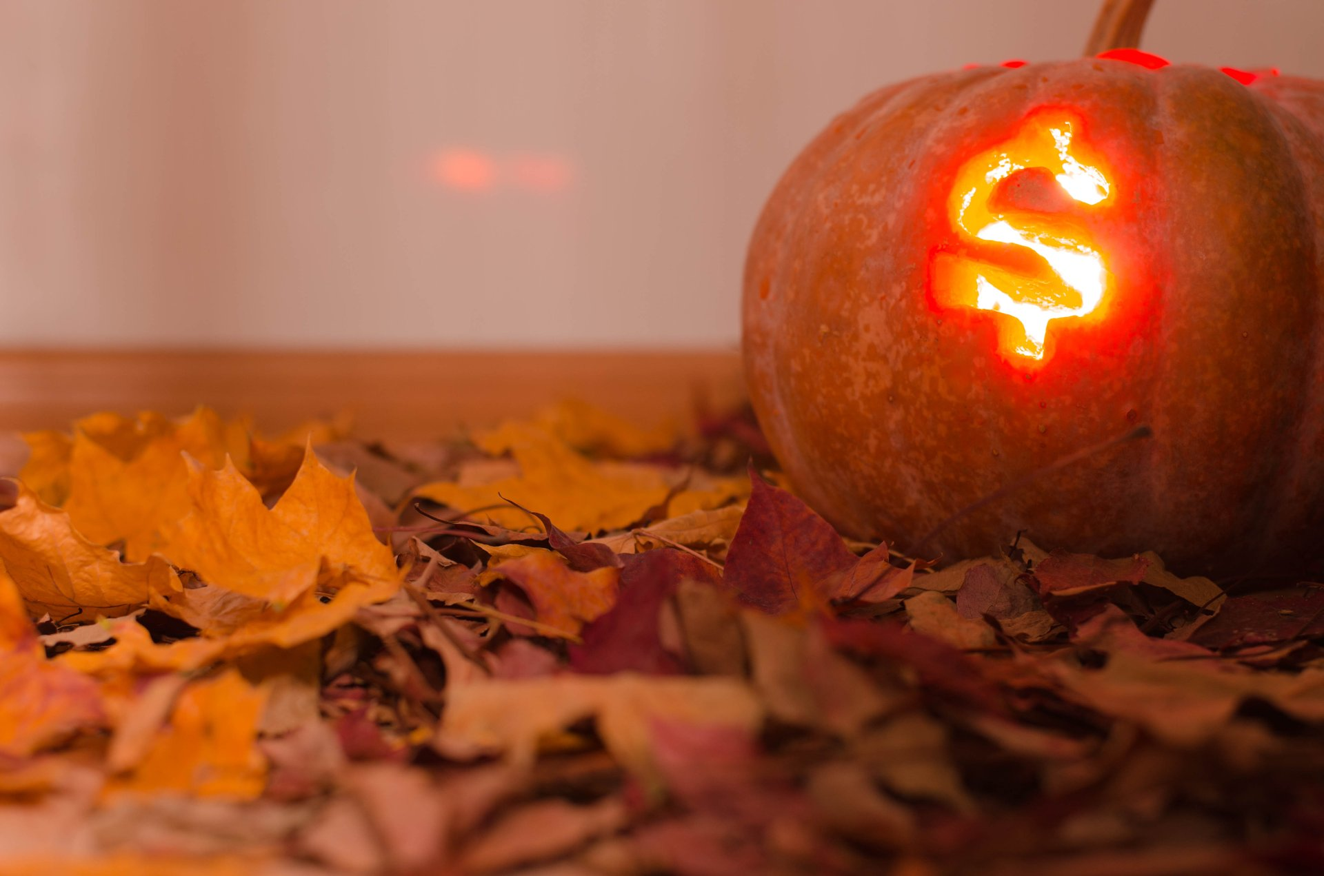 Jack-o-lantern caved with dollar sign