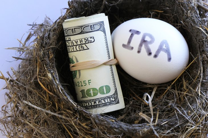 "An ""IRA"" egg in a nest with cash"