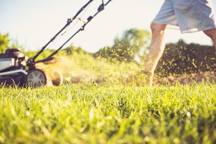 Mowing lawns can be a simple, straightforward way to make some money this summer.