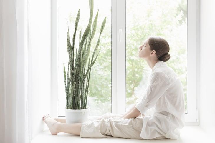 A woman sits next to a snake plant
