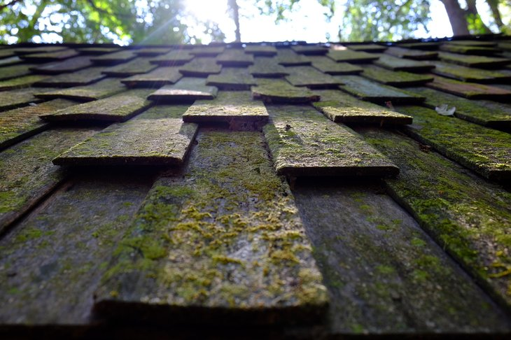 You can see how well your existing roof is faring against the elements in your neighborhood. Use that knowledge to inform the choice of your new roof. (Photo by By btogether.ked)