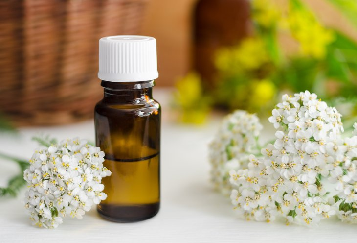 Yarrow flower and essential oil.