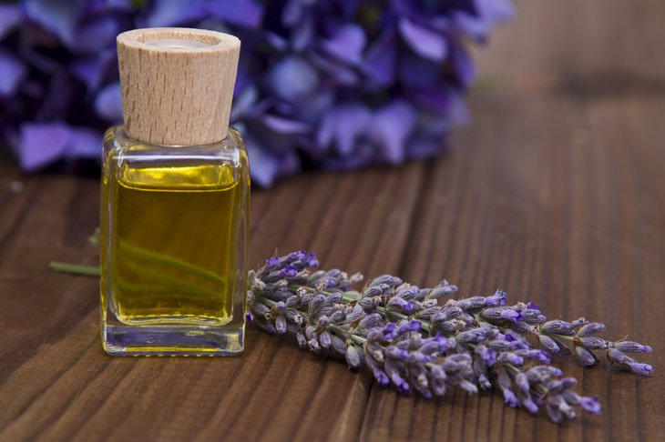 Lavender flowers and essential oil.