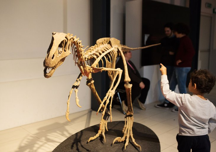 Many museums now have displays that are more enjoyable and interactive for kids, alongside the traditional (and often well-loved) dinosaur skeletons, dioramas and collections of clothing, artifacts and taxidermy.