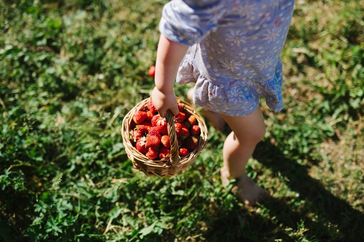 Time to go berry-picking with the kids!
