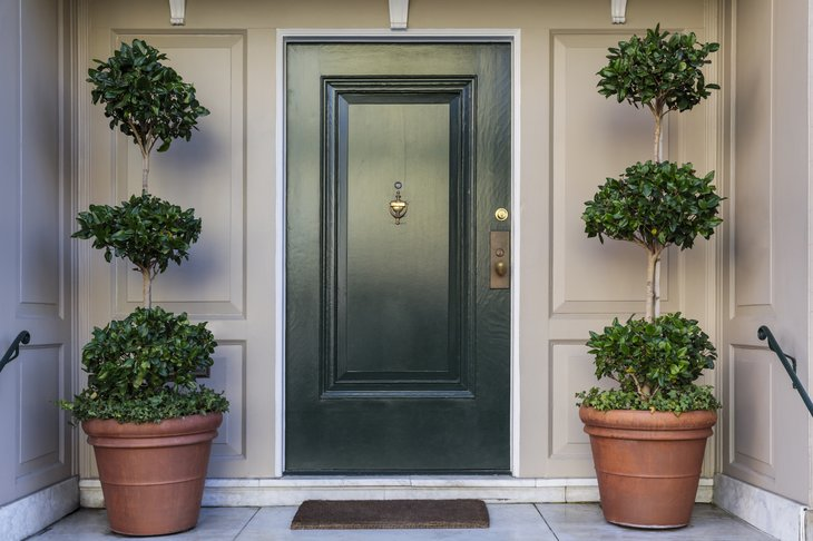 Front door with shrub on each side.