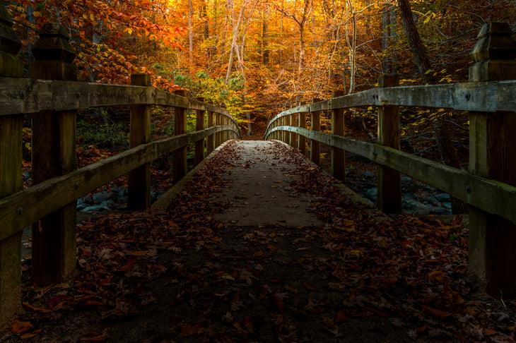 Rock Creek Park in Washington DC, in autumn