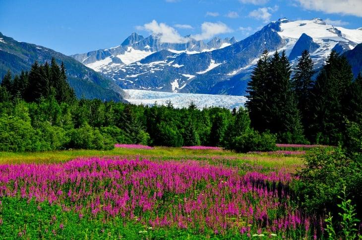 Alaska springtime landscape