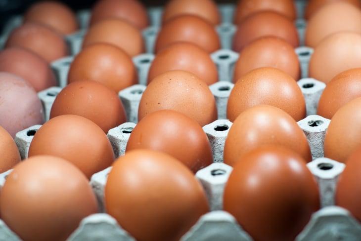 Brown chicken eggs in a carton.