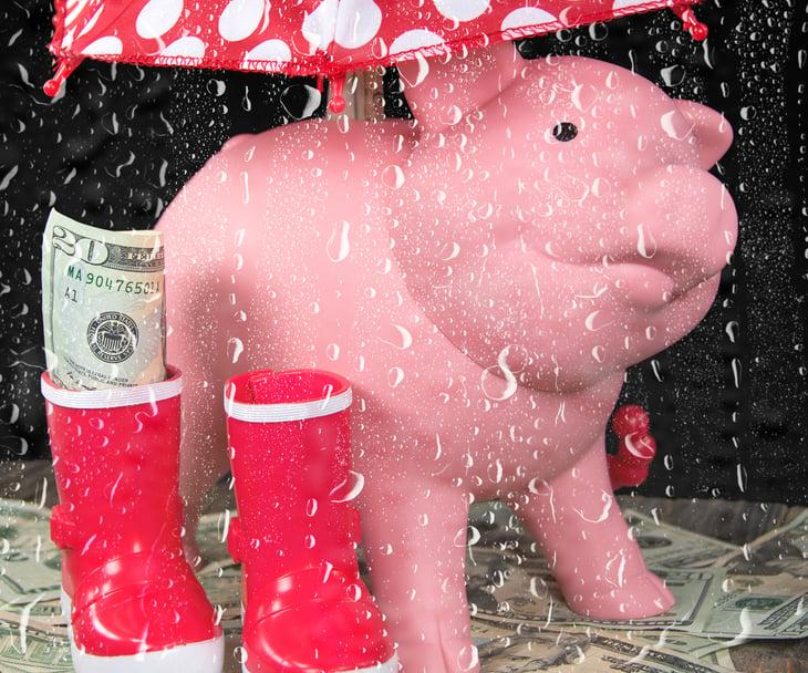 Pig and rainboots under umbrella