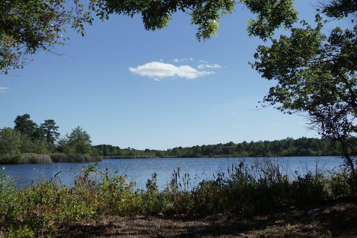 Pine Barrens Lakes