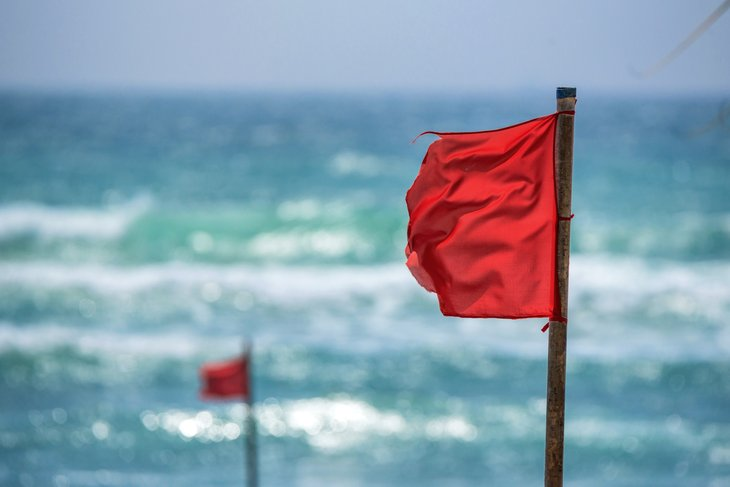 Red flags on beach with rugged surf behind.