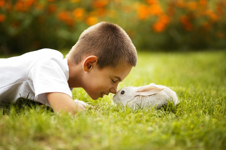 Boy nose-to-nose with a rabbit in the grass.