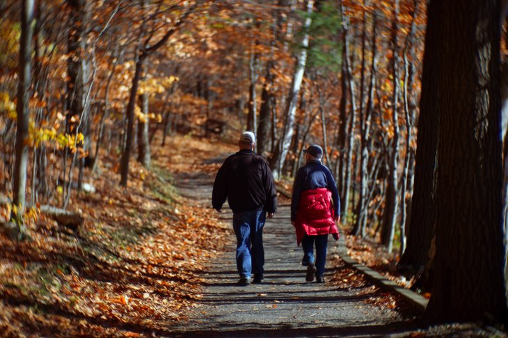 Couple hiking in the woods