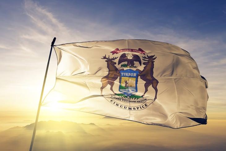 Michigan governor flag