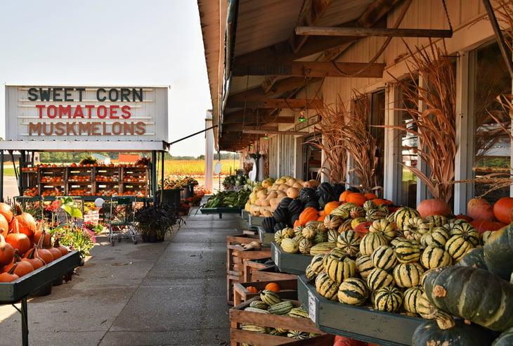 Wisconsin farmers market.