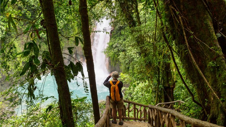 Man looking through binoculars in rain forest.
