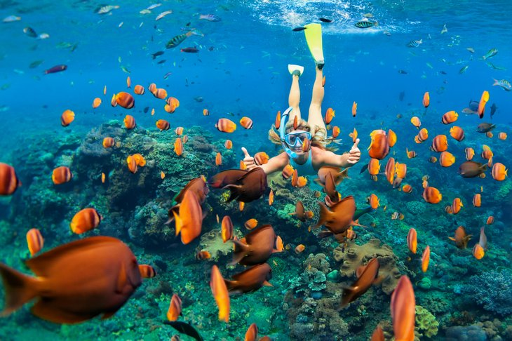 Swimming with tropical fish