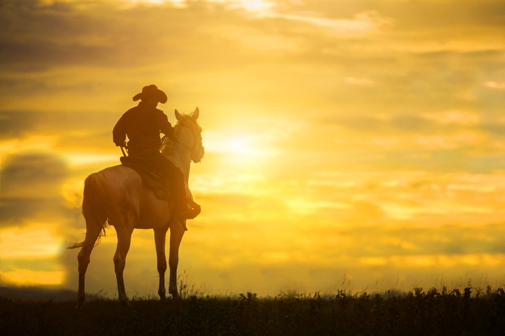 Cowboy on horse in sunset