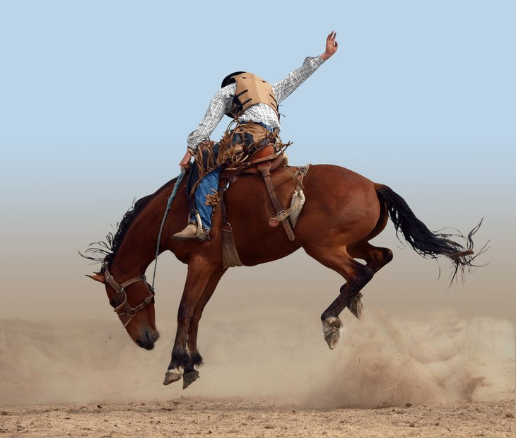 Rider on bucking bronco