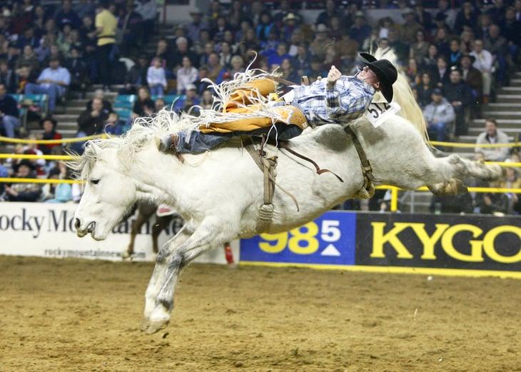 Bareback rider at rodeo