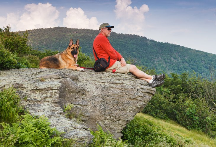 A senior man and German Shepherd dog sit on a cliff on Roan Mountain, located along the Tennessee-North Carolina state line in the Appalachian Mountains