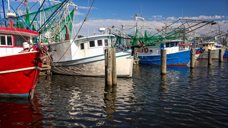 Shrimp boats in Biloxi, Mississippi