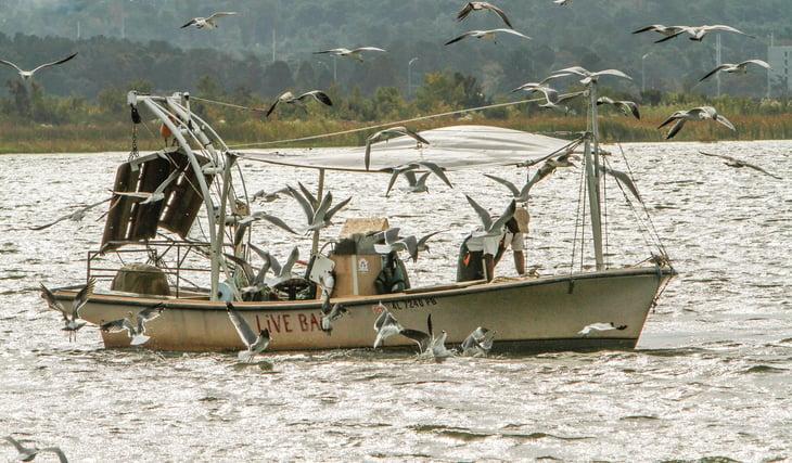 Fisherman off the coast of Alabama