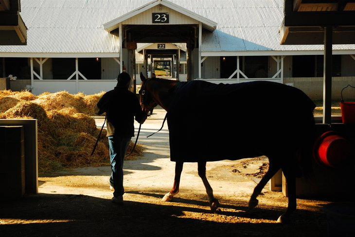 Horse barn in Lexington, Kentucky