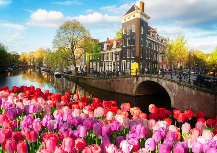 Netherlands and tulips