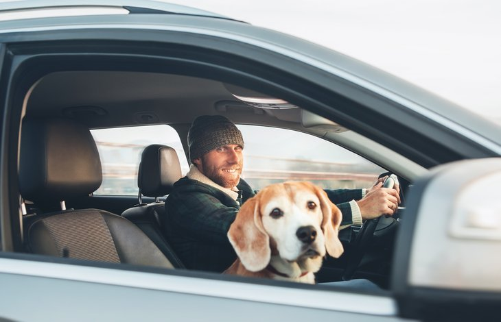 Man driving a car with his dog