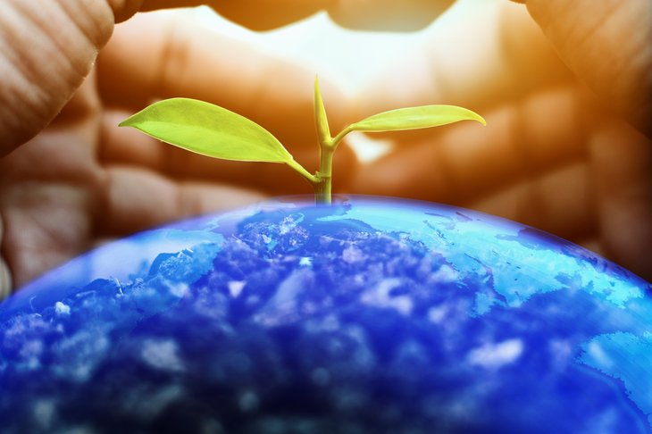 Hands protect globe. Save Earth Planet World environment earth