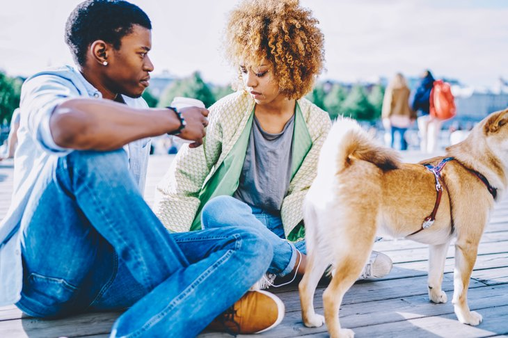 young african american man woman couple love talking communicating sunny day dog friends talking