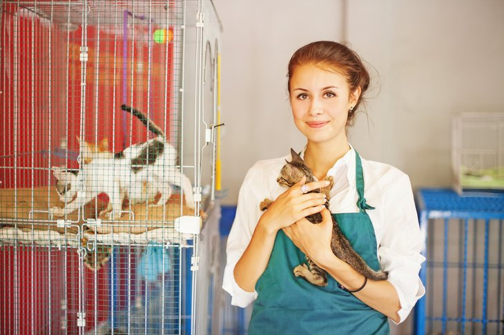 A woman working in an animal shelter taking care of animals