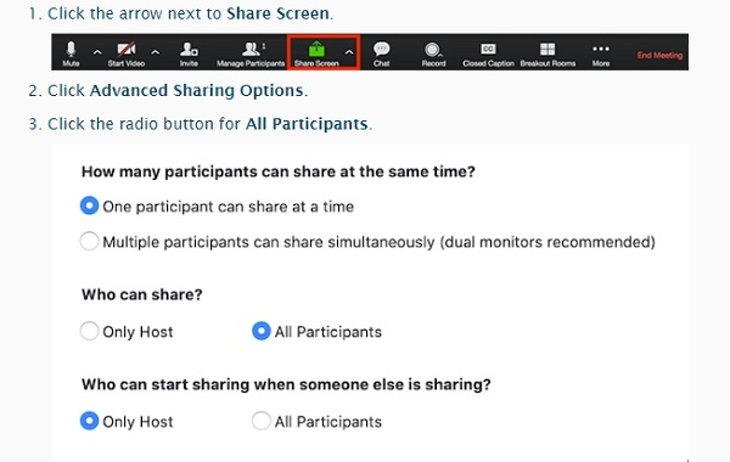 Screenshot of who can share a Zoom conference meeting