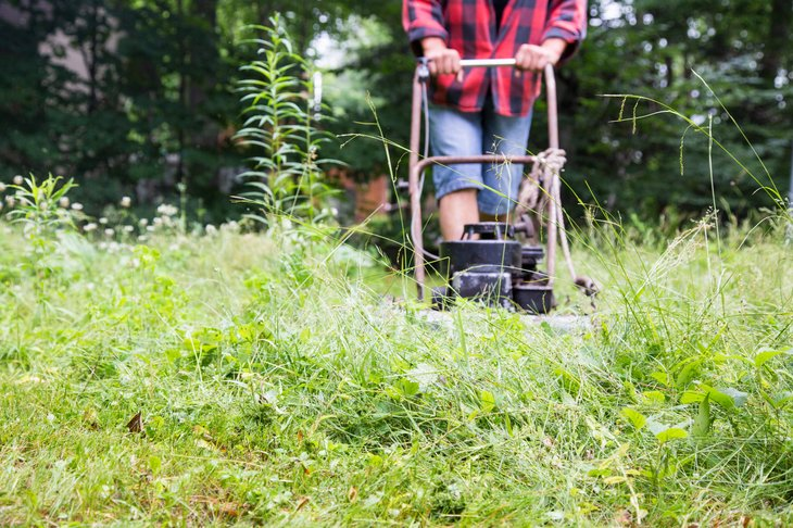 Man mowing weeds in an overgrown lawn