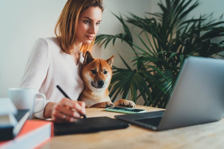 Graphic artist working on laptop with her dog at home