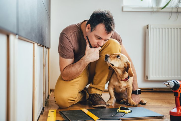 Man and his dog working on a home construction or renovation project