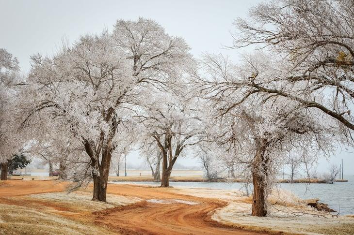 Hoarfrost near Lake Hefner in Oklahoma City