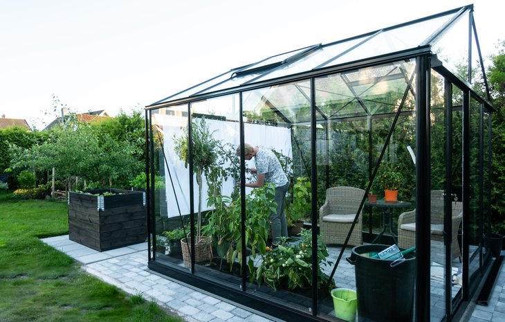 Man caring for plants in a backyard greenhouse