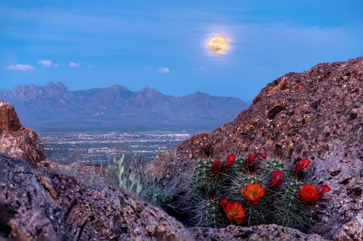 Las Cruces, New Mexico