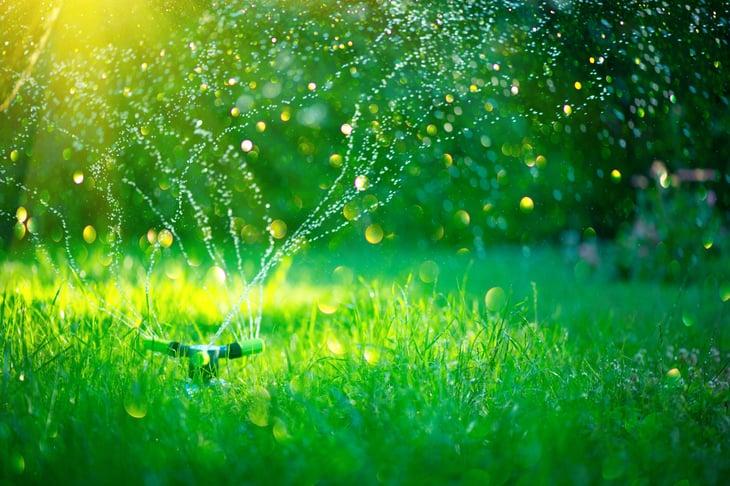 Water sprinklers on lawn
