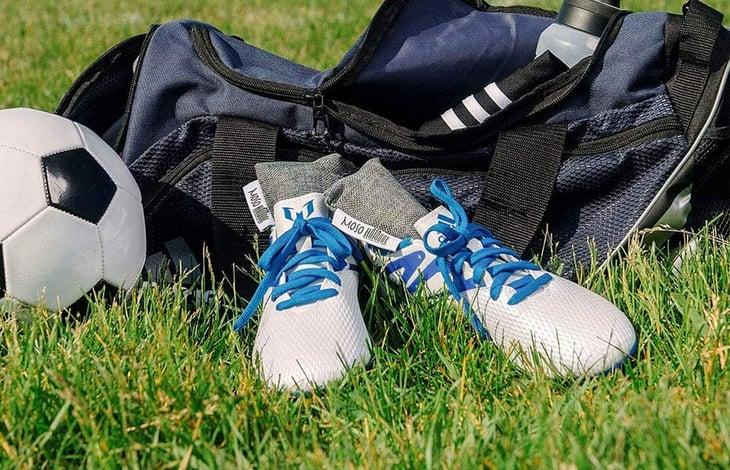 Moso Natural shoe deodorizers