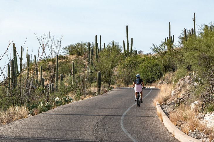 bicyclist cyclist in Tucson Arizona