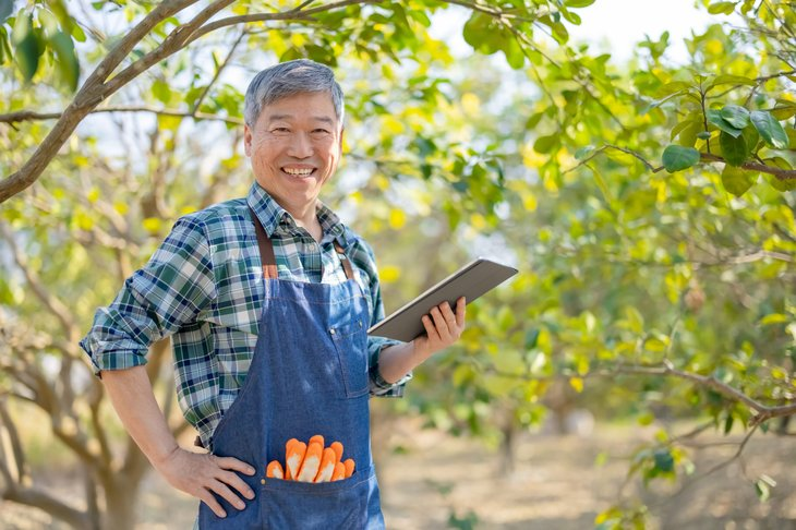 Senior man working in agriculture